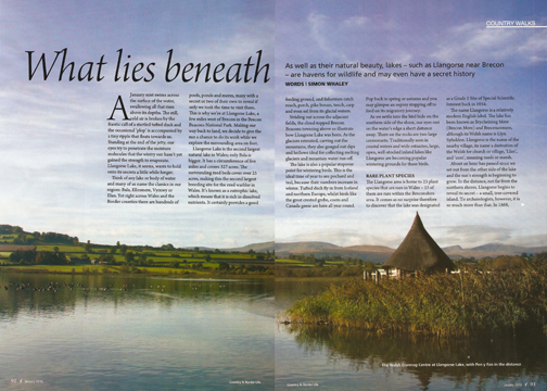What Lies Beneath was published in Country & Border Life magazine