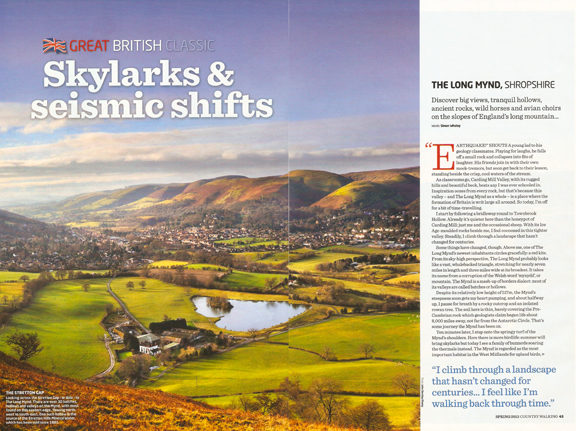 Skylarks and Seismic Shifts 1