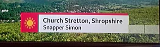 Sizzling Snapper Simon